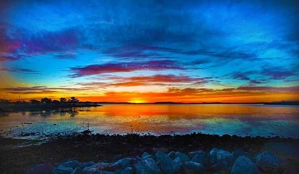 San Leandro Bay View