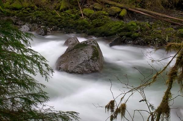 Nooksack River, Mount Baker National Forest