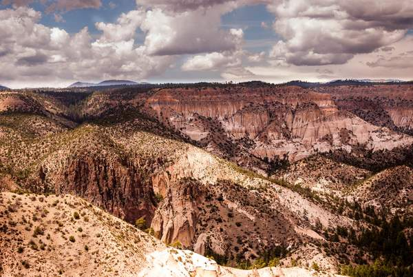 Copper Cliffs