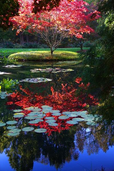 Outdoors by Vernon Adams