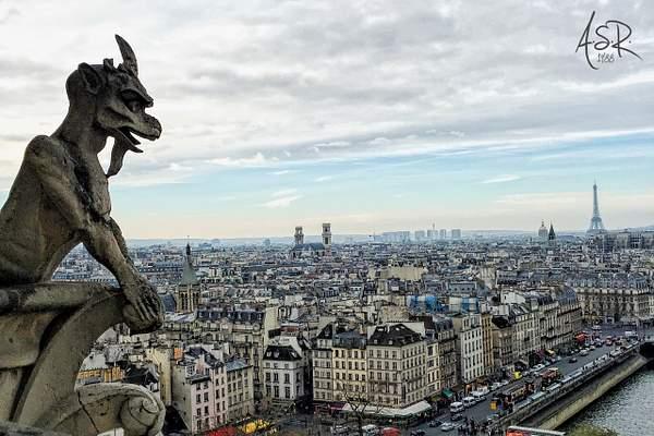 Gárgolas de Notre Dame, París.