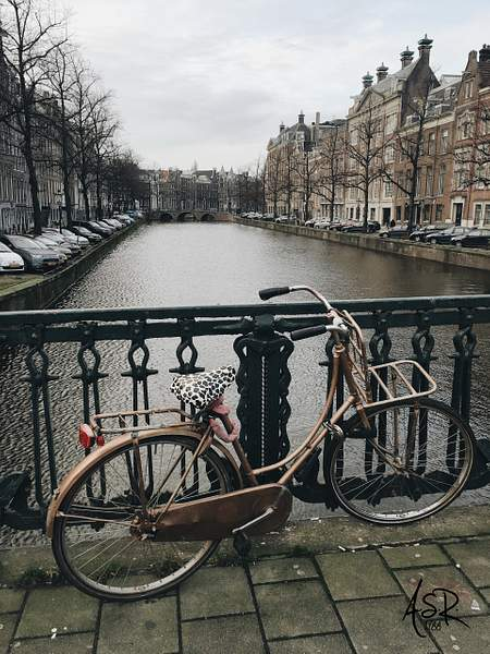 Beach Cruiser, Amsterdam.