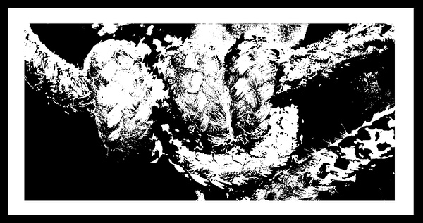 50-Tons-de-Cinza (370) by marcomachado