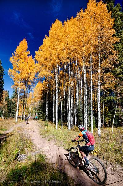 Cyclist | Crested Butte, CO | September, 2015