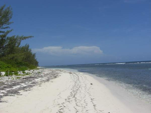 Some of the 3km of beach