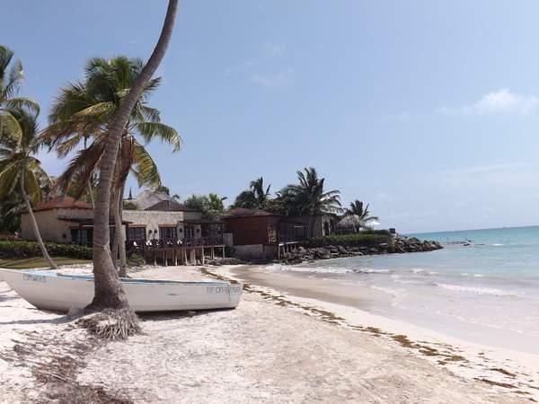 Trump Beach