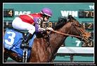 Jockey Amanda Tamburello
