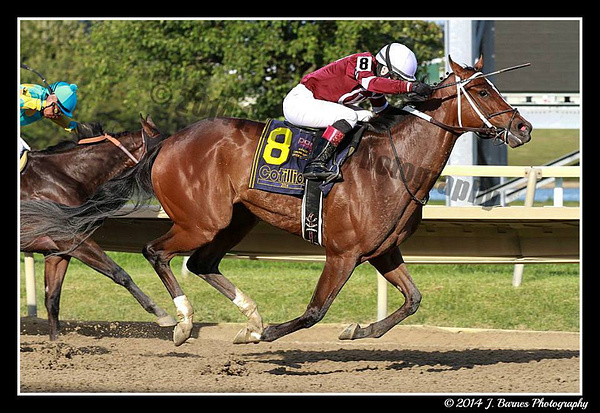 Rosie Napravnik aboard Untapable in Cotillion Stakes by Chris Forbes