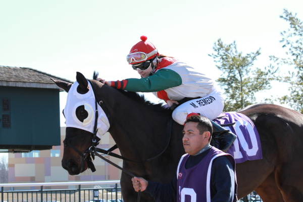 March 10, 2013 @ Parx Racing by Maria Remedio