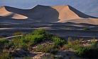 San Diego Natural History Museum - Death Valley -