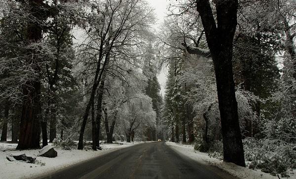 Yosemite in Winter - 2007 by DaveWyman