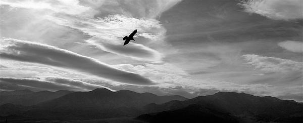 Death Valley Haikus - Winter, 2007 by DaveWyman
