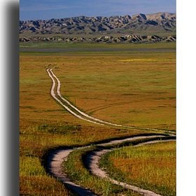 The Carrizo Plain - California