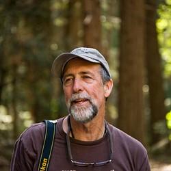 Dave Wyman