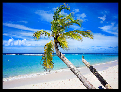 Best of Barbados
