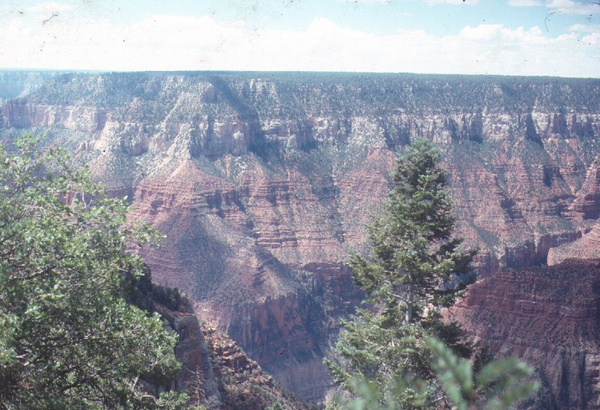 Grand Canyon Sept '78 by LarryMorris