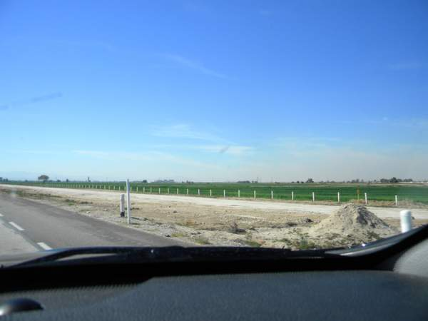 DSCN9904agriculture near Mexicali