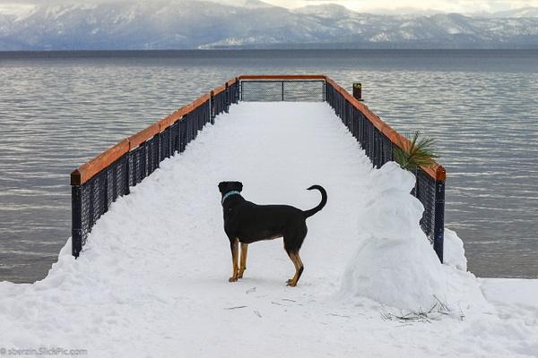 Lake Tahoe-2012-4122 by SBerzin