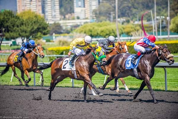 Horse Racing 10