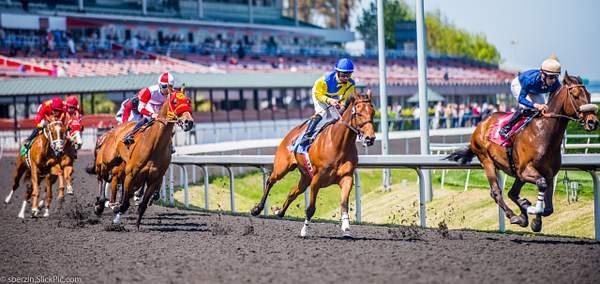 Horse Racing 6