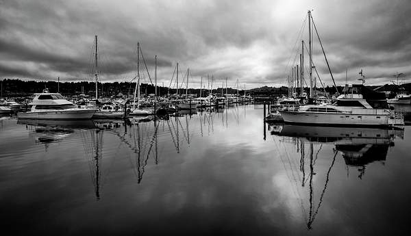 Cloudy Marina Reflections Black and White