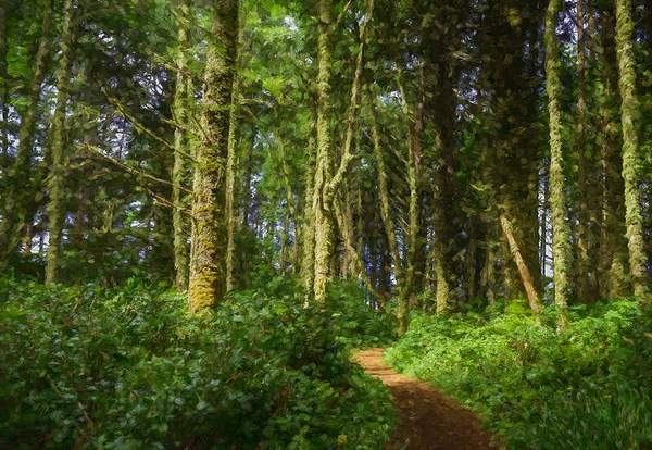 Path Through the Woods At Cape Perpetua with Impressions