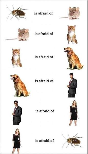 Circle-of-fear