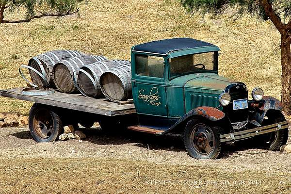 Old Truck in a Vineyard