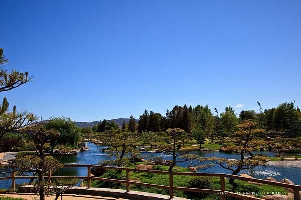 Japanese Gardens 4