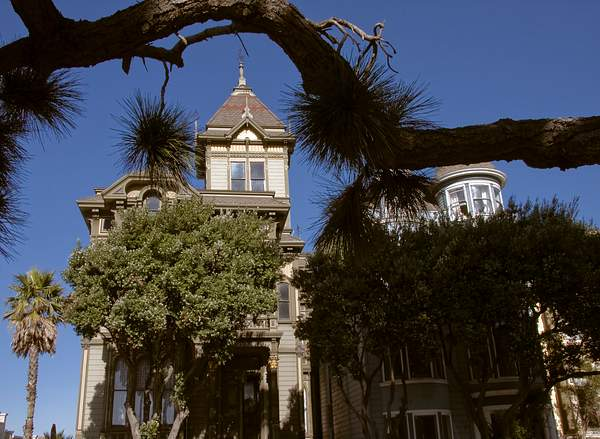 Alamo Square 3