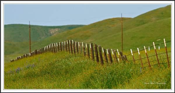 CA Hwy 46-Fence