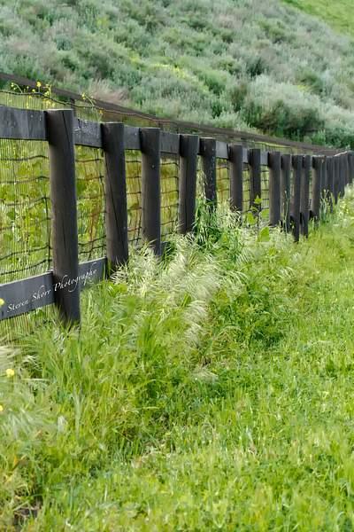 Fence in Ballard Canyon