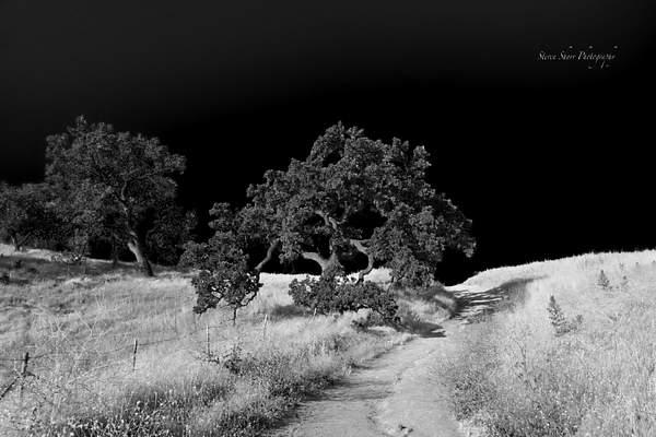 Las Virgenes Canyon Open Space Preserve 2