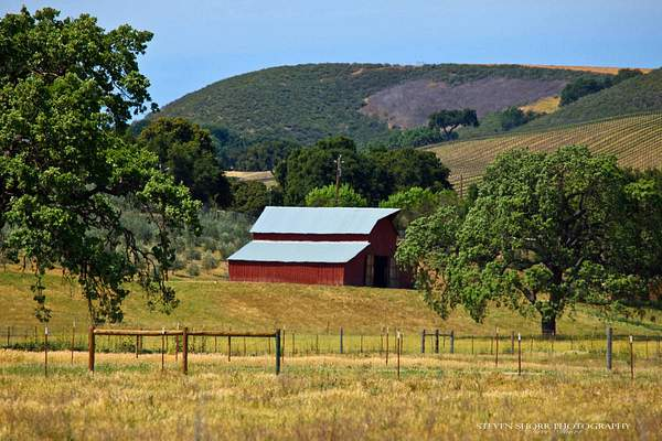 Red Barn in Ballard Canyon