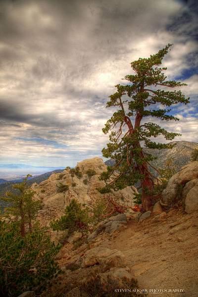 Tahquitz Peak Hike 8