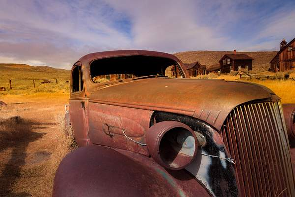 Rusted Beauty