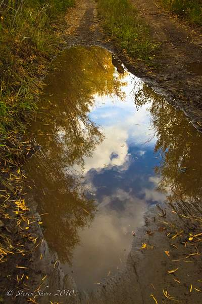 Reflecting_on_a_Puddle