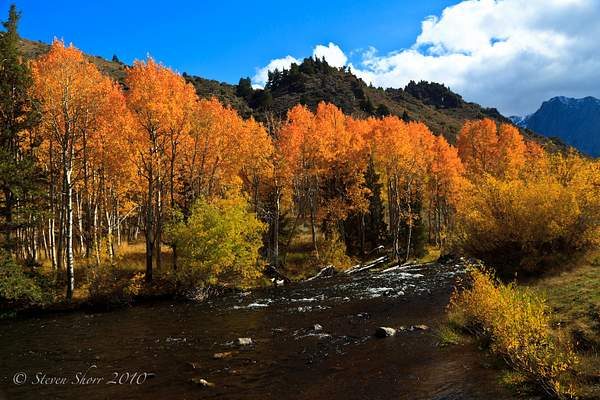 Fall_Colors_9