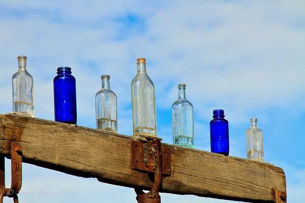 Elmer's Bottle Farm-3