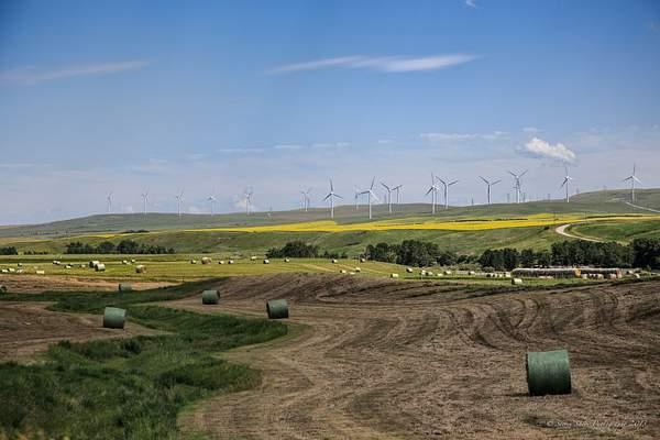 Southwest Alberta-1