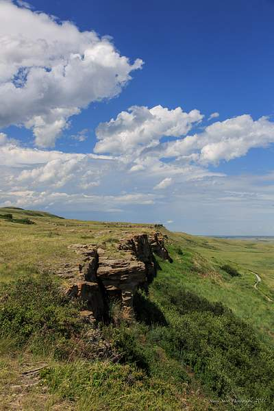 Head Smashed In Buffalo Jump-10