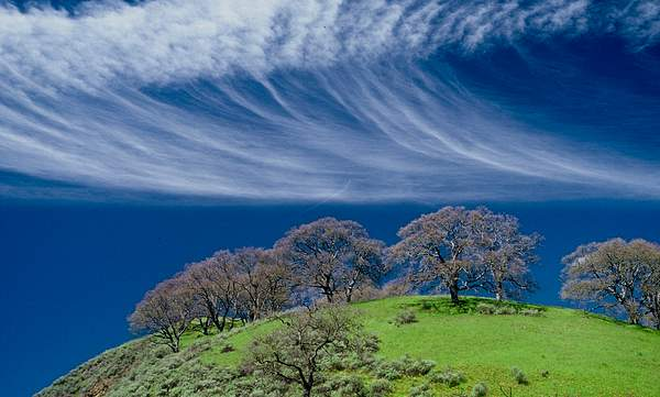 Another cloud at the Sunol Park