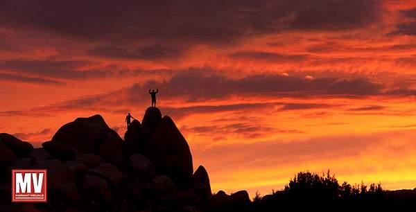 Places: Joshua Tree National Park