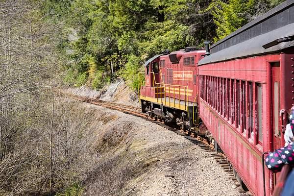 Skunk Train.jpg