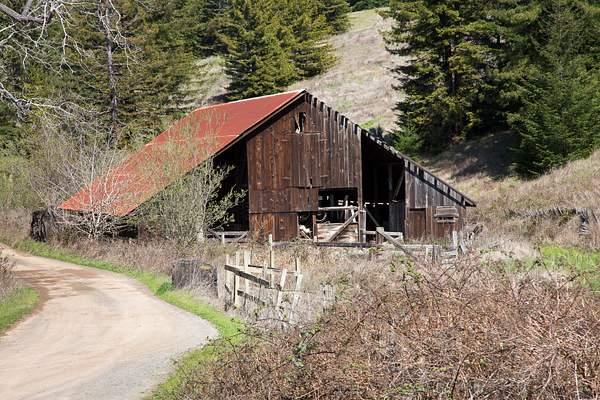Old barn near Willits.jpg
