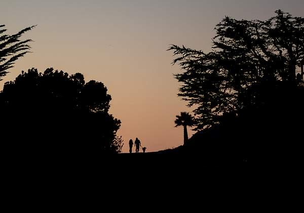 Night Walk in Cambria.jpg