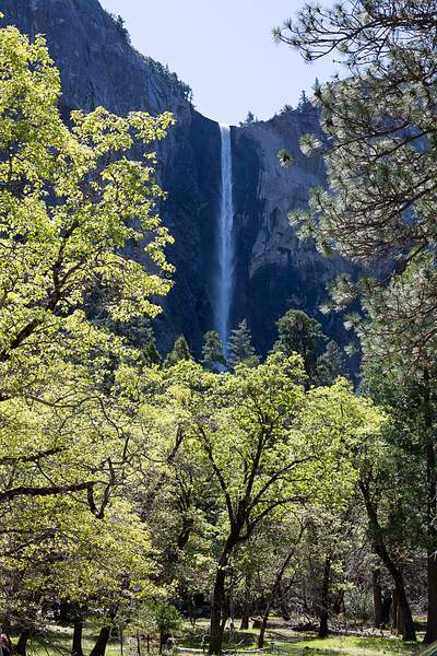 BridalVail Falls from pull-out on Southside Dr.jpg