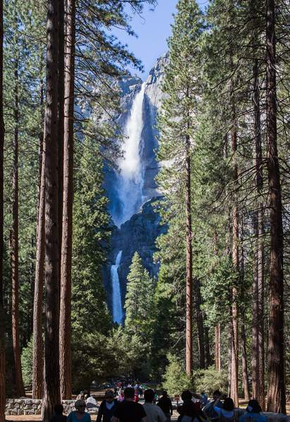 Classic View of Yosemite Falls from Path to foot of Falls.jpg