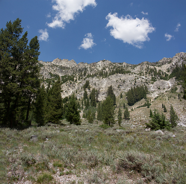 Sawtooth Mtns Alturas Lake Trail 2014 by Harrison Clark