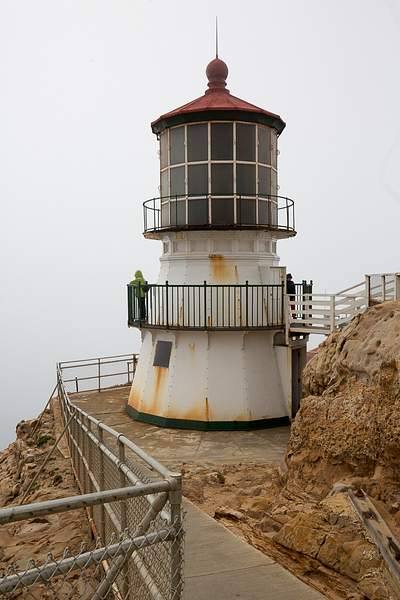 Lighthouse Profile.jpg
